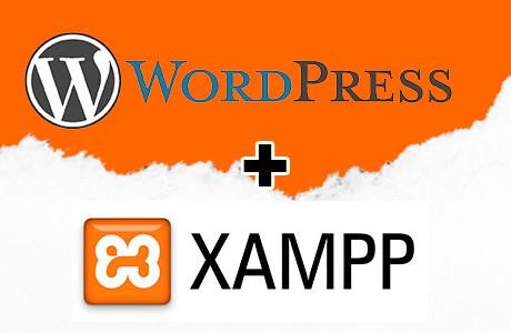 Instalar WordPress en servidor local con Xampp
